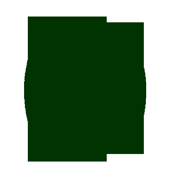 Oleificio Salamida Alberobello | Olio Extravergine di Oliva Italiano